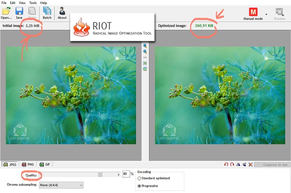 metody optymalizacji zdjęć do internetu program Riot